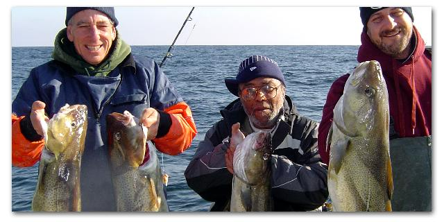 New COD fishing trips yields some nice keepers!  Yum!